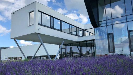 Lavendel_16x9-image_510px